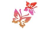 Schmetterlinge & Vögel