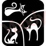 3er Katzen Glitzertattoos Schablone